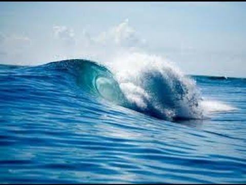tsunami terdahsyat di dunia._