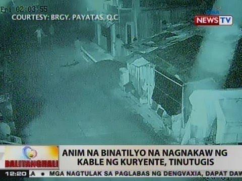 Download BT: 6 na binatilyo na nagnakaw ng kable ng kuryente sa QC, tinutugis