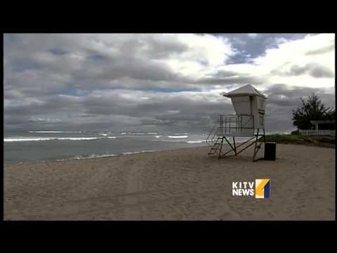 Surfer suffers from shark attack at White Plains Beach