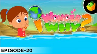Why Does The Tide Come In And Go Out Again? - I Wonder Why - Amazing Fun Facts Video For Kids