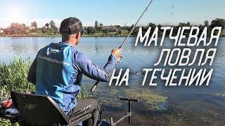 Матчевая Ловля на Течении. Рыбалка в Беларуси 2020.