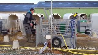 Vidéo de pesée dans cage Maréchalle PM 300, faite par PLM Magazine