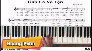 Hướng dẫn đệm Piano: Tình Ca Vô Tận -l Ngọc Kôn l - Hoàng Peter