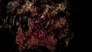 Repeat youtube video Ersom Dantas- Resgata dog sendo devorado vivo por bicheiras!!
