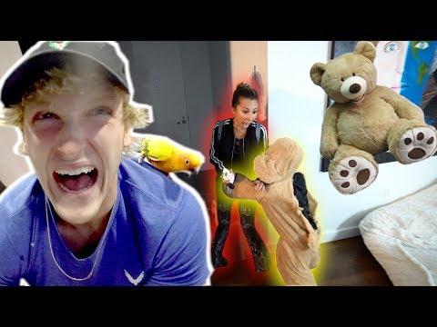 REAL LIFE TEDDY BEAR SCARE PRANK!