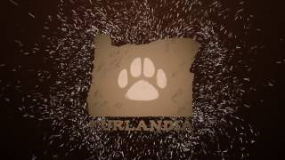 Furlandia 2017 Preview!