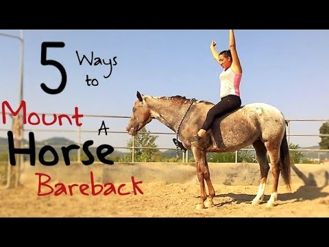5 Different Ways To Mount A Horse Bareback