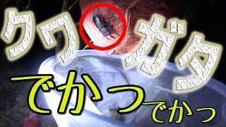 クワガタ取りに案内してくれた吉田さん http://www.goonies-okinawa.com...