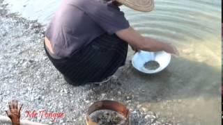 MRTongue/ orpailleur/ chercheur en guimbarde (khomus) rivere sud France