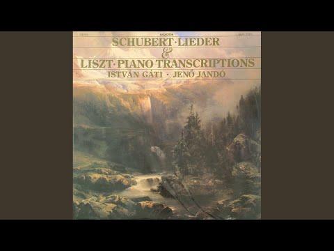 Winterreise D. 911, Op. 89 - No. 24 Der Leiermann