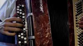 "Сектор Газа - ""Туман"" на баяне (видеоурок)"