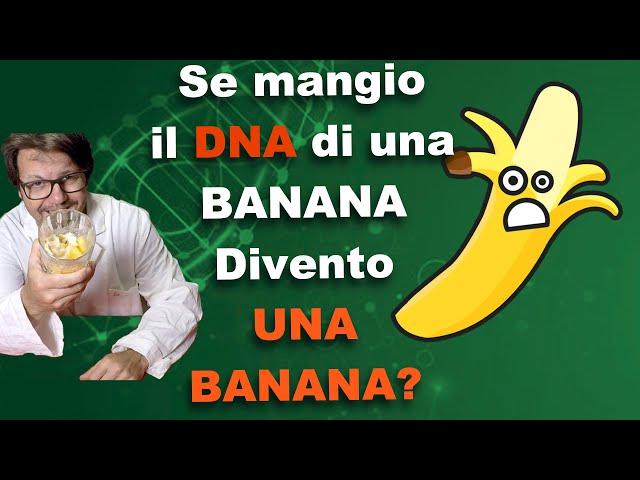 Se mangio il DNA di una banana divento una banana? Esperimento col botto.