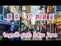 【駅前散策・309】東急池上線・戸越銀座 の動画、YouTube動画。