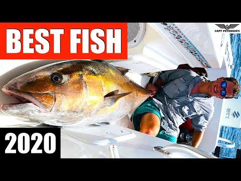 2020 Best Fish - St George Island - Florida - Deep Sea Fishing