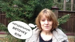 178. Уроки Ангелов. Ёлка и желания / Лена Воронова
