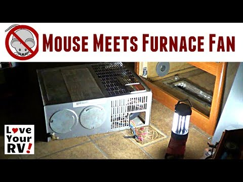 Late Night Mouse Jammed in RV Furnace Fan