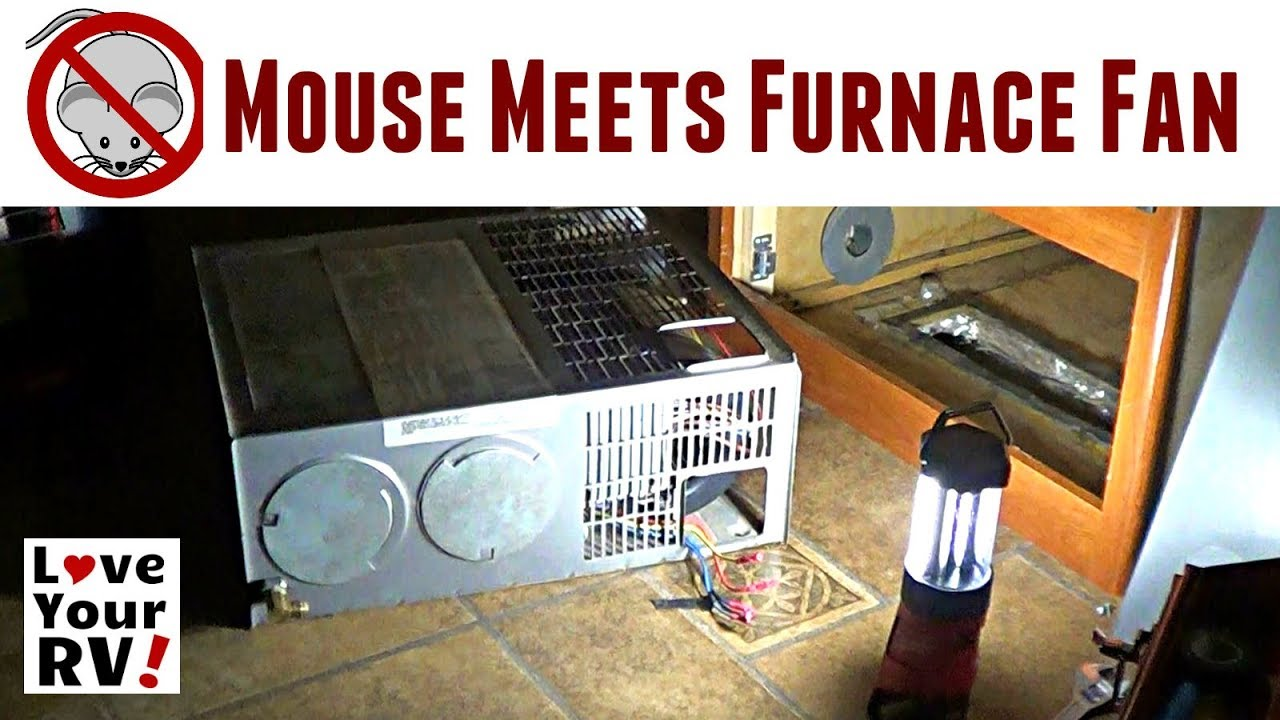 Late Night Mouse Jammed in RV Furnace Fan on