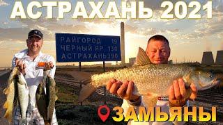 Рыбалка в Астрахани 2021 Ловим сазана на жмых Трофейный жерех с берега Лютый шторм