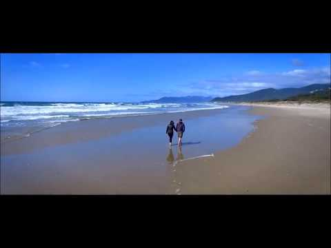 Santana I'm Feeling You - Feat. Michelle Branch