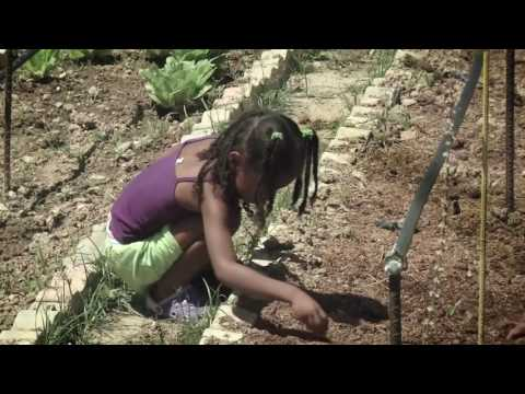 Urban gardening helps Venezuelans cope with food crisis