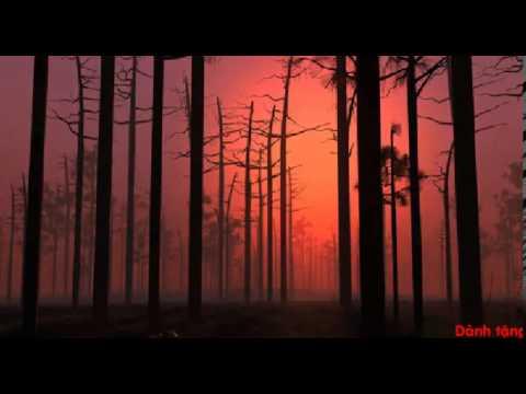 Forever - Stratovarius (HQ)