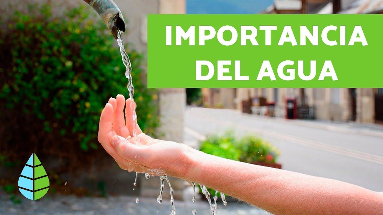 Importancia Del Agua Para El Planeta Y El Ser Humano
