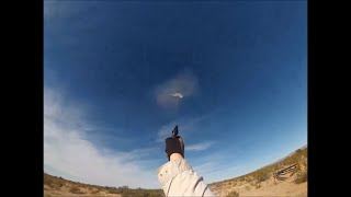 Dove Hunting With A .22 Pistol?