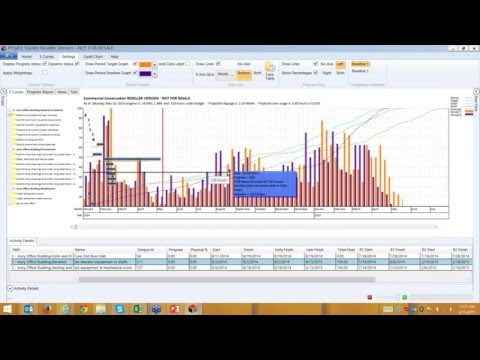 Dynamic S-curve Reporting from MS Project and Primavera P6 Project Data in Project Tracker - PT06
