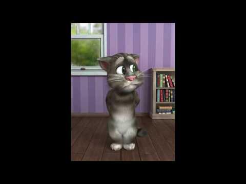 Talking Tom Cat's take on HRO!
