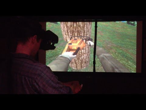 STEM from the Humanities: Jeremy Bailenson, Stanford Virtual Reality Lab