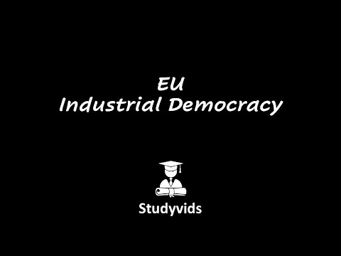 N0311E  EU Industrial Democracy