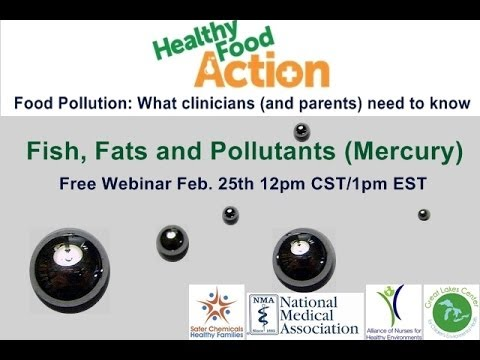 Food Pollution: What clinicians and parents need to know.  Fish, Fats and Pollutants (Mercury)