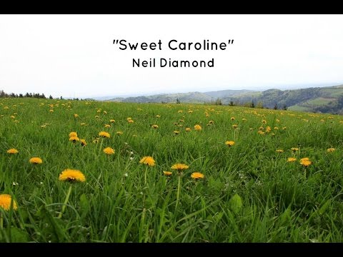 Sweet Caroline (Lyrics) - Neil Diamond - YouTube