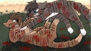 Коты воители смерти