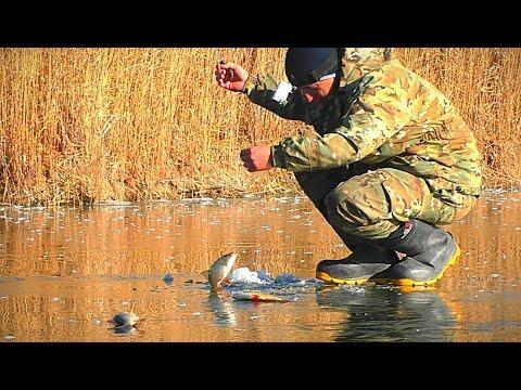 ПЕРВЫЙ ЛЁД. АКТИВНЫЙ КЛЁВ. ЖЕРЛИЦЫ и первые щуки. Зимняя рыбалка
