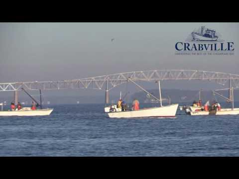 Rappahannock Oyster Harvesting