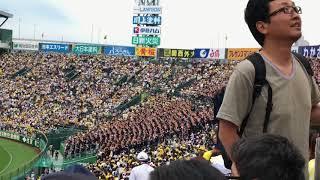 甲子園で開催された、日本生命セ・パ交流戦阪神vsロッテ、1回表の模様で...