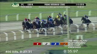 Vidéo de la course PMU PREMIO BORDONERO 2008