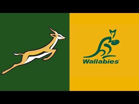Image result for wallabies vs springboks