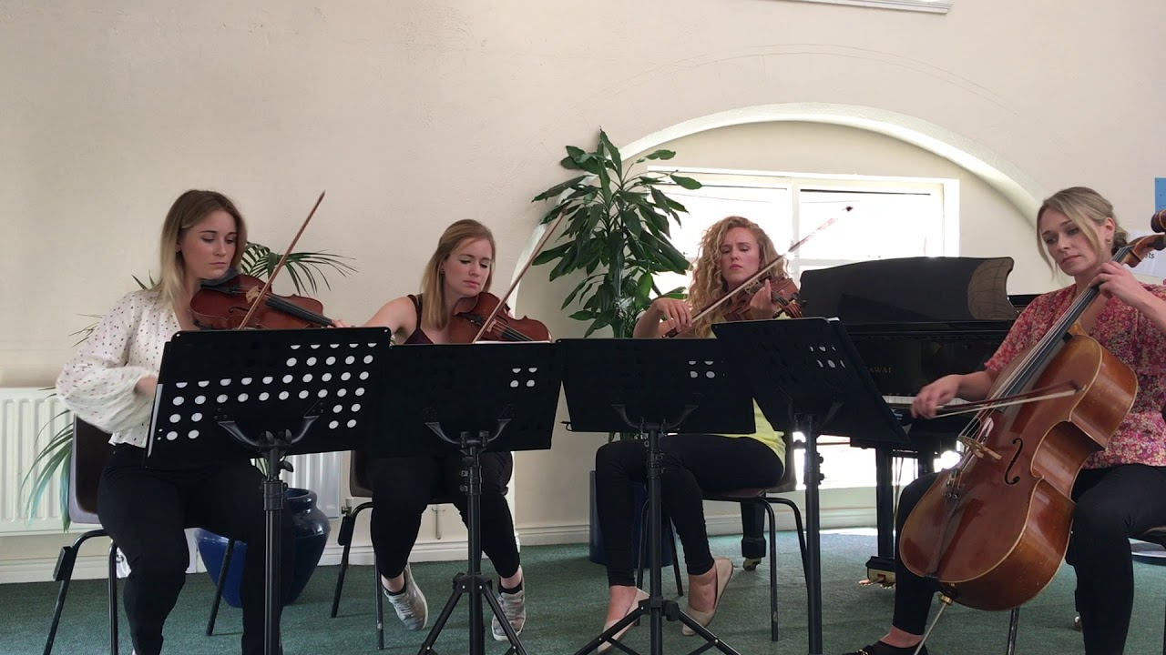 Leinster String Quartet Video 4