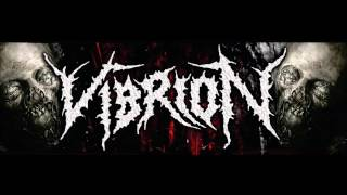Watch Vibrion Metamorphosis video