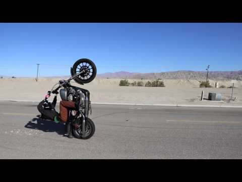 Rebel Supply Co-Wheelie Good Times