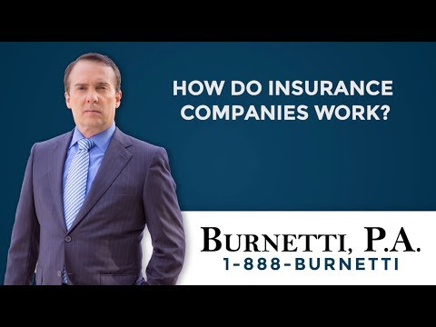 How Do Insurance Companies Work?