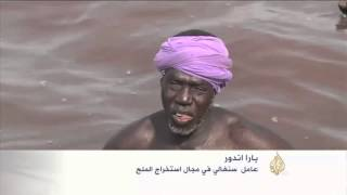 البحرية الوردية.. معلم سياحي بالسنغال