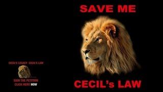 Brian May & Kerry Ellis - Born Free (Cecil