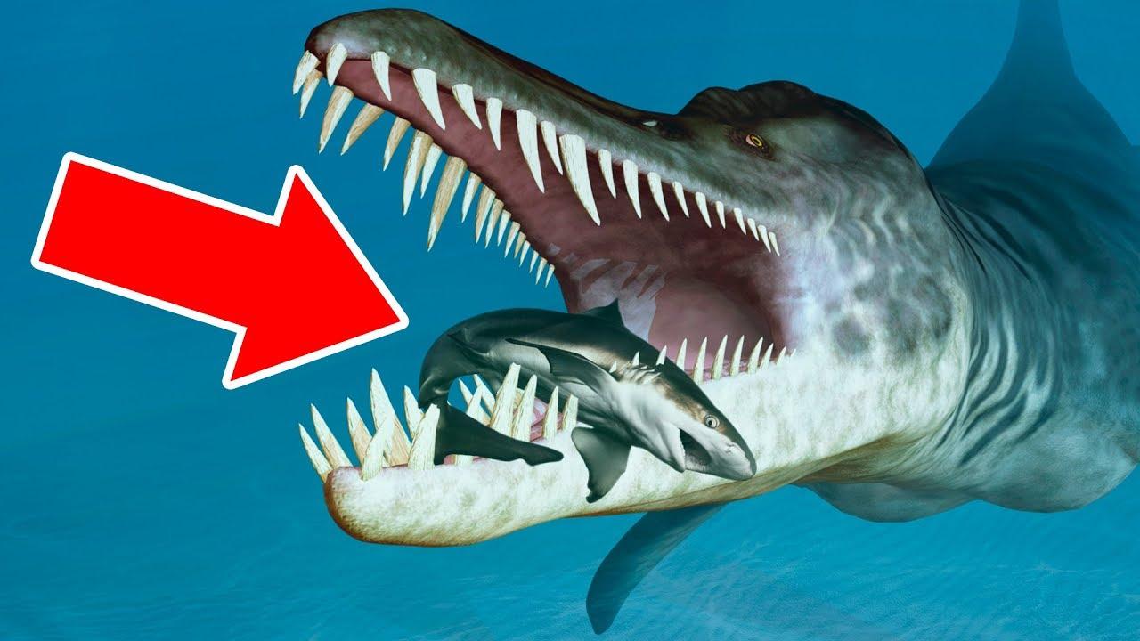 10 Créatures Aujourd'hui Disparues Qui te Glaceront le Sang