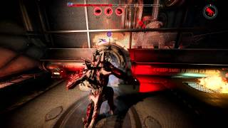 Evolve Quick Play (60FPS)
