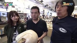『週刊バイクTV』#687「アライヘルメット工場見学」【チバテレ公式】