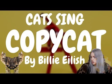 Cats Sing Copycat by Billie Eilish | Cats Singing Song
