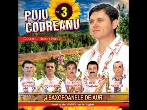 Puiu Codreanu - S-a nascut un printisor